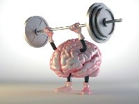 denken-en-geheugen150123-MS-cognitie1