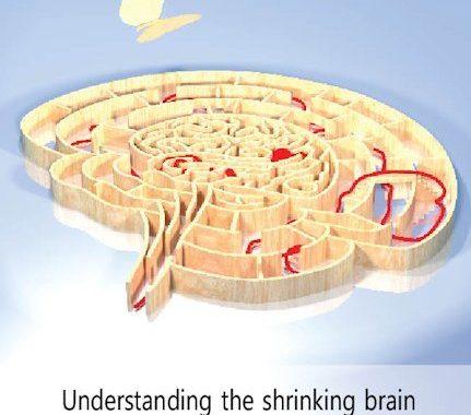 Beter Begrip Bij Krimpende Hersenen Bij MS
