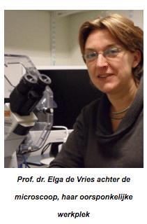 Prof. dr. Elga de Vries achter de microscoop, haar oorsponkelijke werkplek