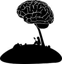 MS En Cognitie