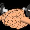 Brainpower Gezocht!