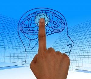 cognitie bijeenkomst Nijkerk